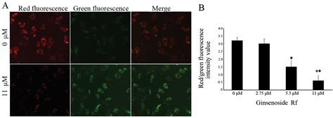 Induction of G2/M phase cell cycle arrest and apoptosis by