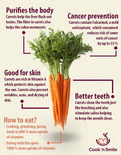 Carrot Nutrition, Antioxidants and Many Benefits for Your